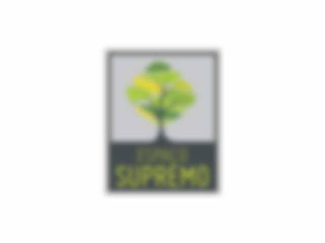 Espaço para Bodas - Espaço para Eventos - Espaço Supremo - Campinas - SP - 1